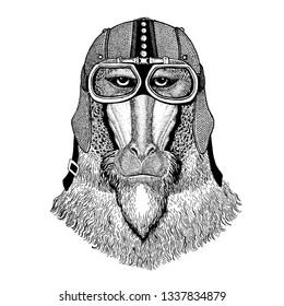 Monkey, baboon, dog-ape, ape wearing motorcycle, aero helmet. Biker illustration for t-shirt, posters, prints.