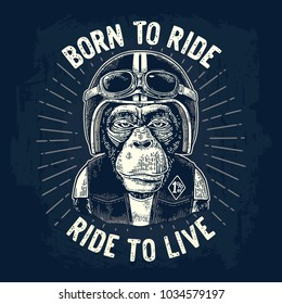 Monkey biker dressed in the motorcycle helmet, waistcoat and glasses. Born to ride lettering. Vintage white engraving illustration isolated on dark blue background for poster, t-shirt print bike club