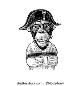 Monkey with crossed paws dressed in the straitjacket and Napoleon cap. Vintage black engraving illustration. Isolated on white background. Hand drawn design element for poster, t-shirt