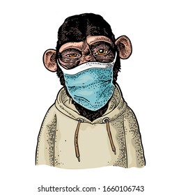 Monkey dressed in the hoodie and medical blue mask. Vintage color engraving illustration isolated on white. Hand drawn design element for poster quarantine coronavirus