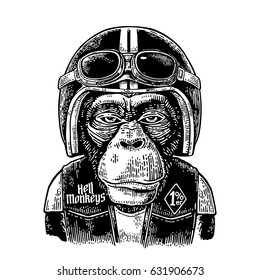 Monkey dressed in human motorcycle helmet and glasses. Hell monkeys and 1% lettering on the waistcoat. Vintage black engraving illustration for poster and t-shirt design bike club. Isolated on white