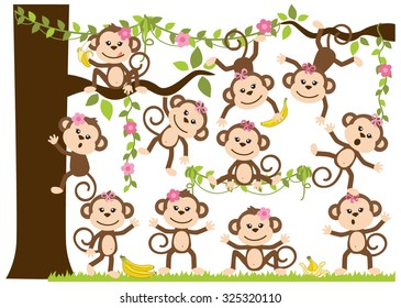 Monkey Girls
