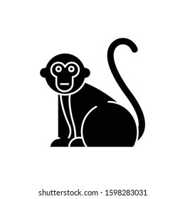 Monkey glyph icon. Tropical country animals, mammals. Trip to Indonesia zoo. Exploring exotic wildlife. Primate sitting. Silhouette symbol. Negative space. Vector isolated illustration