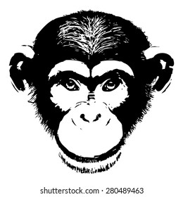 Monkey head avatar, Chinese zodiac sign, black silhouette isolated on white, hand drawn portrait, grunge, front face.