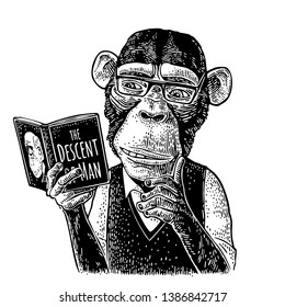 Monkey hipster is reading a book The Descent of Man with glasses dressed in shirt and slip-over. Vintage black engraving illustration isolated on white. Hand drawn design element for t-shirt