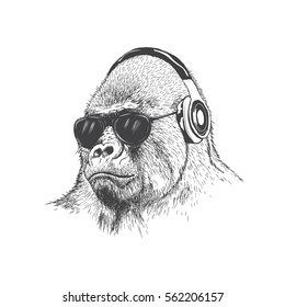 Monkey music fan hand drawn vector illustration. Gorilla in sunglasses listening to music in headphones