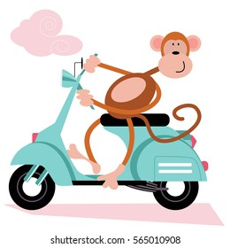 Monkey on Scooter