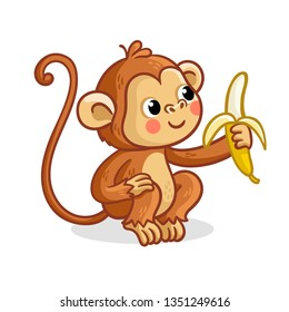 The monkey on a white background eats a banana. Vector illustration with a cute animal from Africa.