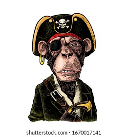 Monkey pirate with gun dressed in a cocked hat, suit, eye patch. Vintage color engraving illustration. Isolated on white background. Hand drawn design element for label and poster