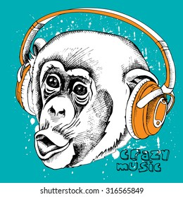 Monkey portrait in a headphones. Vector illustration.
