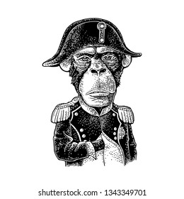 Monkey in the pose of Napoleon dressed in the french military uniform and cap. Vintage black engraving illustration. Isolated on white background. Hand drawn design element for poster, t-shirt