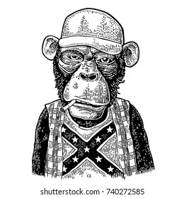 Monkey redneck smokes cigarette dressed  in human trucker cap, checkered shirt, t-shirt with the flag of the Confederate. Vintage black engraving illustration for poster. Isolated on white background