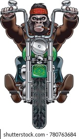 monkey riding motorcycle