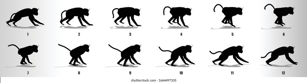 Monkey run cycle animation frames silhouette, loop animation sequence sprite sheet