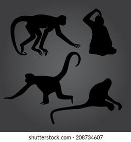 monkey shadows silhouette set eps10