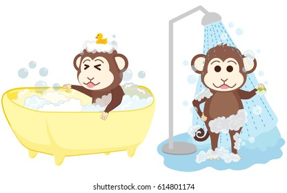 Monkey shower and bathe at bathroom.
