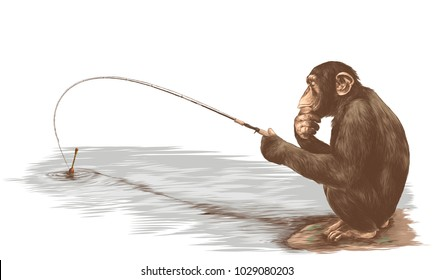 monkey sitting on his haunches with a fishing rod and catches a fish sketch vector graphics color picture
