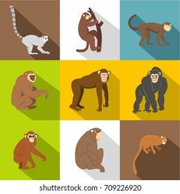 Monkey types icon set. Flat style set of 9 monkey types vector icons for web design