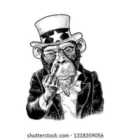 Monkey Uncle Sam with middle finger sign Fuck you. Vintage black engraving illustration for recruiting poster. Isolated on white background. Hand drawn design element