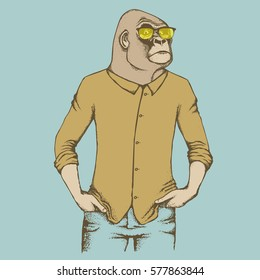 Monkey vector concept. Illustration of African gorilla in human suit. The most dangerous ape and biggest monkey