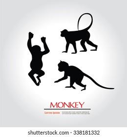 Monkey.monkey sign.vector illustration.