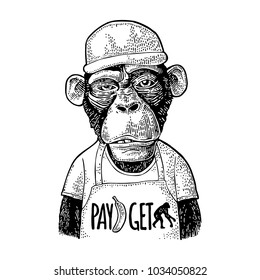Monkeys fast food worker serving fast food dressed in cap and t-shirt with pay get lettering. Vintage black engraving illustration for poster. Isolated on white background. Hand drawn design element