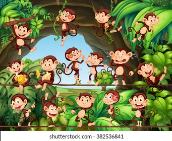 Monkeys living in the forest illustration
