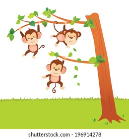 Monkeys swinging in a tree. Little monkeys have fun activities.