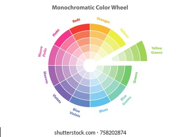 monochromatic color wheel, color scheme theory, vector isolated or white background