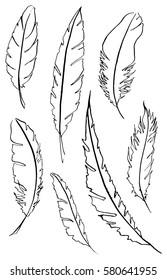 Monochrome black and white bird feather vector set