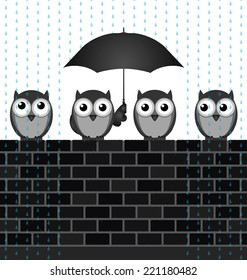 Monochrome comical birds sheltering from the rain sat on a brick wall