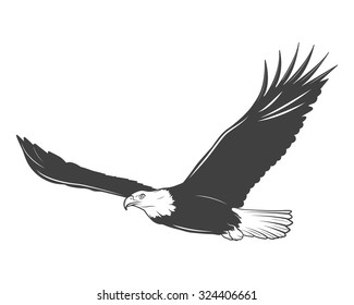 Monochrome eagle on a white background. Vector EPS8 illustration.