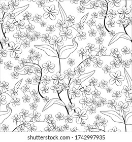 Monochrome floral seamless pattern with forget-me-not flowers on white background. Stock vector illustration.