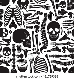 Monochrome human skeleton seamless pattern with big skulls and various single bones flat vector illustration