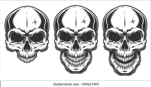 Monochrome illustration of skull. On white background