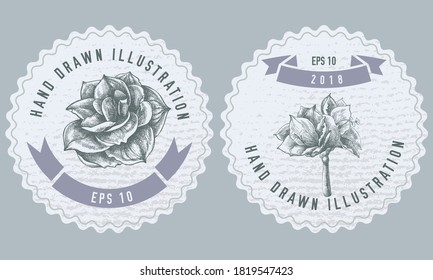 Monochrome labels design with illustration of amaryllis