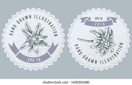 Monochrome labes with edelweiss Vector design with illustration