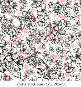 Monochrome outlines of blossom branches hand-drawn in pen and ink. Spring flowers on tree branch. Black on white. Decorating wrapping, bedlinen, stationery, wallpaper, fabric. Backdrop with pink spots