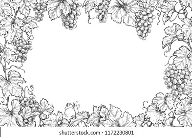 Monochrome rectangle horizontal frame made with grapes branches and berries.  Hand drawn grape bunches and leaves. Black and white border with space for text. Vector sketch.