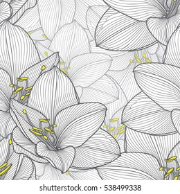 Monochrome seamless hand-drawing floral background with flower amaryllis. Vector illustration.