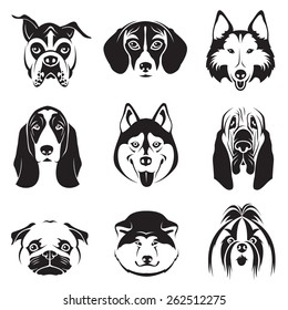 monochrome set of dogs heads