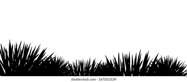 The monochrome silhouette of the grass. Vector illustration