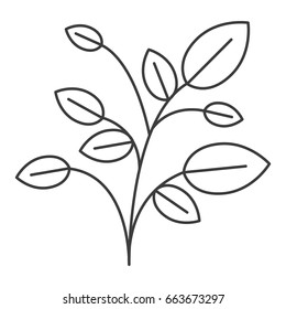 monochrome silhouette of plant with branches and leaves vector illustration