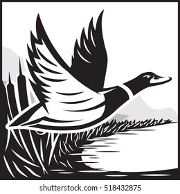 Monochrome vector illustration with flying wild duck over the water