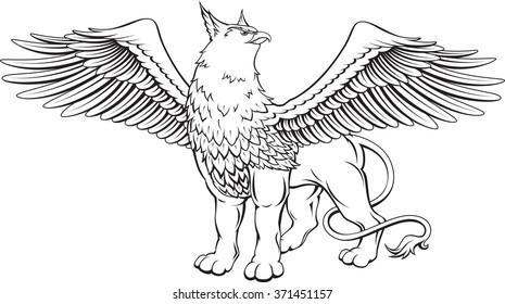 Nn spread eagle with