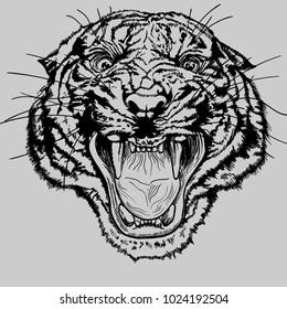 Monochrome vector tiger head. Hand draw. Print.