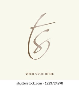 Monogram logo with letter t and letter s.Calligraphic TS icon in metallic color, isolated on light background.