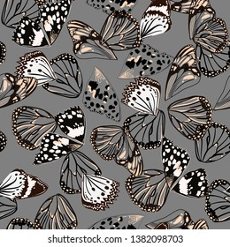 Monotone black and grey colors seamless pattern vectror of butterfly wing surface line hand drawing sketch dsign for fashion,fabric,web,wallpaper and all prints on grey