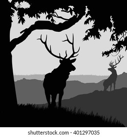 monotonic illustration of two elks on a landscape. silhouette of two elks in the natural environment.