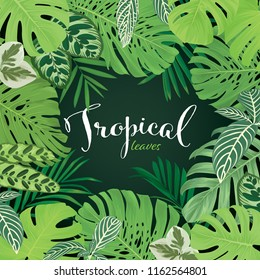 Monstera leaf and green tropical leaves on back background. Vector set of exotic tropical floral for wedding invitations and greeting card design.